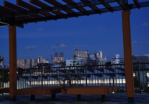 見晴デッキから見た夜の風景です。手前には公園があり、奥の方には点々と明かりがついた建物が見えます。