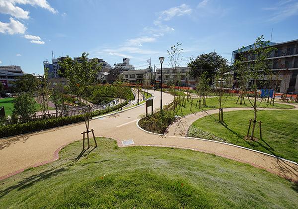 公園を見渡せます。芝生が敷き詰められた広場や広場を囲う道があります。
